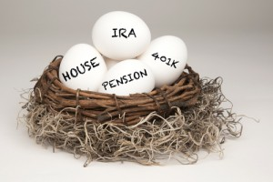 Self-Directed IRA Contributions